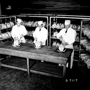 Hanford cooks preparing a Thanksgiving meal