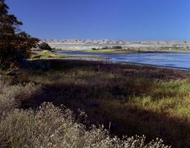 The Hanford Reach is the last free-flowing stretch of the Columbia River. Photo courtesy of PNNL.