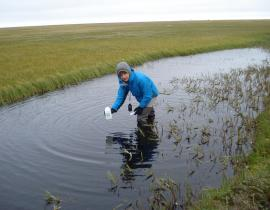NGEE Arctic field research in Alaska. Photo courtesy of DOE.